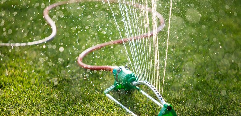 Water advice to tap into – during the drought!