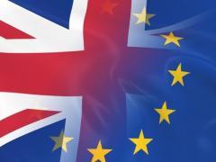 IOG members poll on EU Referendum