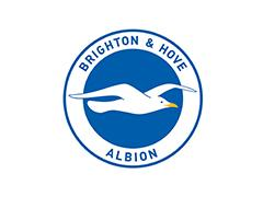 Brighton and Hove Albion Football are looking for a senior groundsperson to join their team.