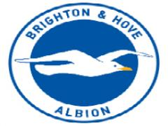 Brighton & Hove Albion Football Club are looking for a Workshop Technician