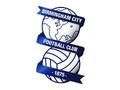Birmingham City Football Club are looking for an apprentice groundsperson.