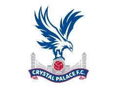 Crystal Palace Football Club, London, are looking for a groundsperson to join their team.
